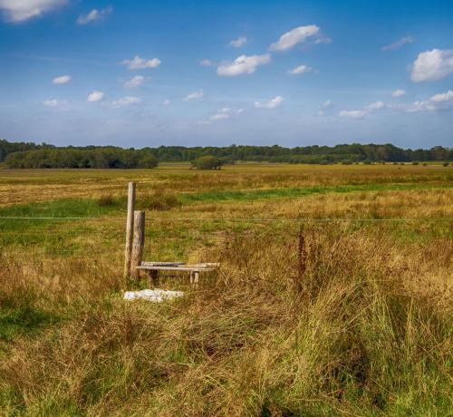 Landschappen grote peel, omgeving Leveroy